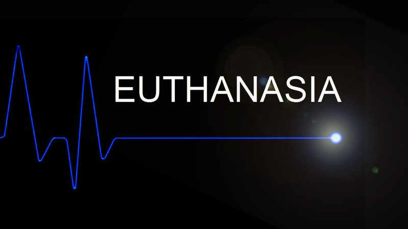 Essays the euthanasia debate