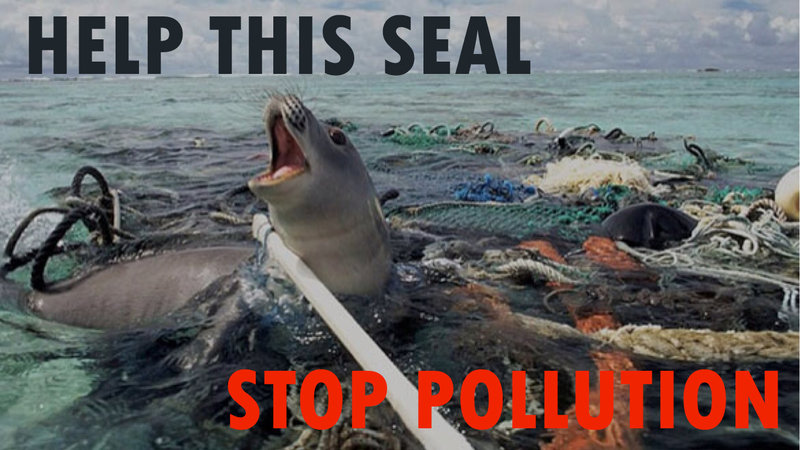 Petition · W: Stop pollution now · Change.org