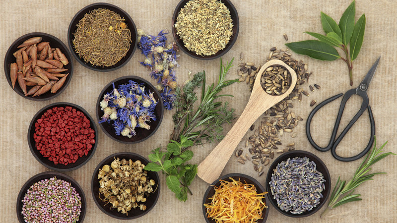 Petition Naturopaths are not doctors: