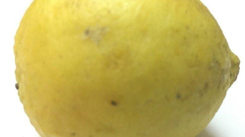 rv lemon law