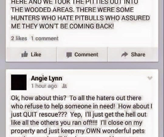 Petition Irs Investigate Charge Angela Morgan Of All Creatures