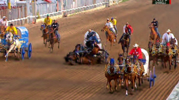 Petition · Alberta SPCA: Stop inhumane chuck wagon races at Calgary