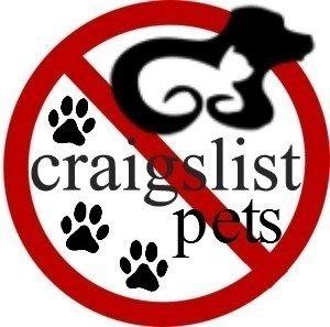 Petition Craigslist Ban The Salegiving Away Of Animals