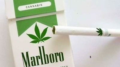 Petition · Government of India: Legalize Marijuana In India · Change org