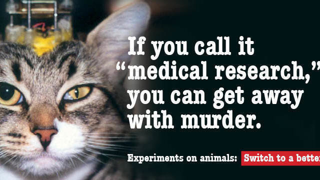 use of animals for medical research The suffering of animals used in medical research is not contested, although the scale of it often is however, views diverge sharply on whether animal.