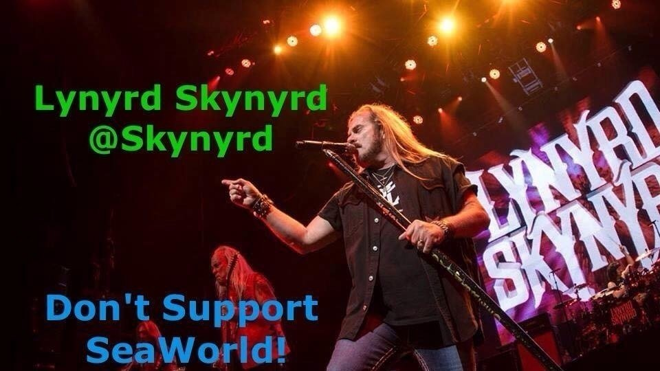 Petition Please Do Not Play At Seaworld 39 S Bayside Stadium In Orlando
