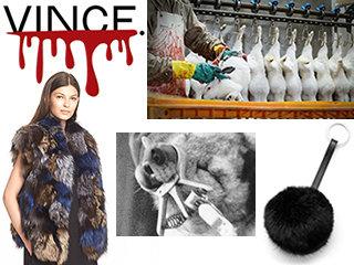 fashion related topics