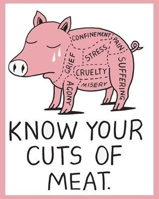 benefits of not eating meat anymore