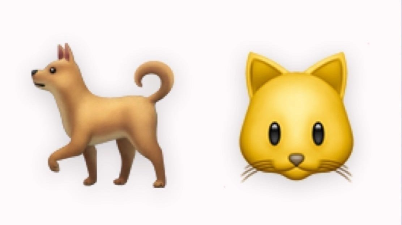 petition · get dog emoji facial expressions · change