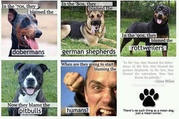 Punish The Deed Not Breed Remove