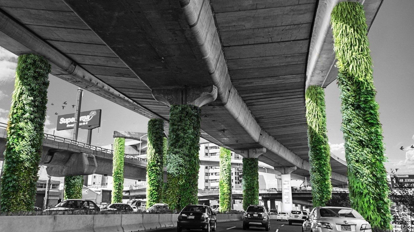 Petici n via verde transformemos el segundo piso en for Muros verdes en mexico