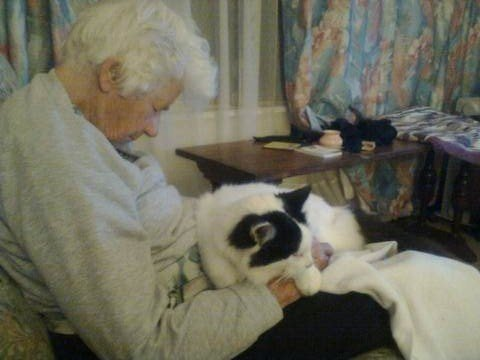 Petition · Retirement Village, South Africa: Help Granny