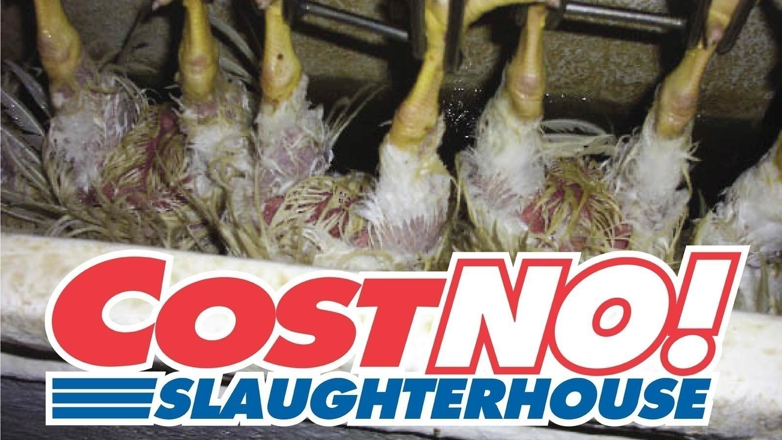 petition middot scott getzschman fremontne gov stop costco from getzschman fremontne gov stop costco from building a poultry processing plant in fremont ne middot org