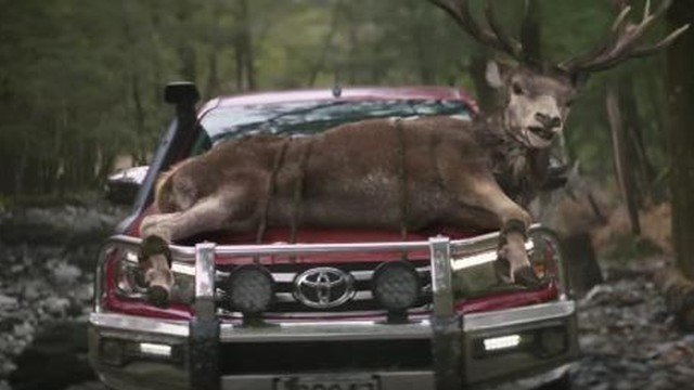 Petition Toyota Motor Company Toyota Pull The Pro