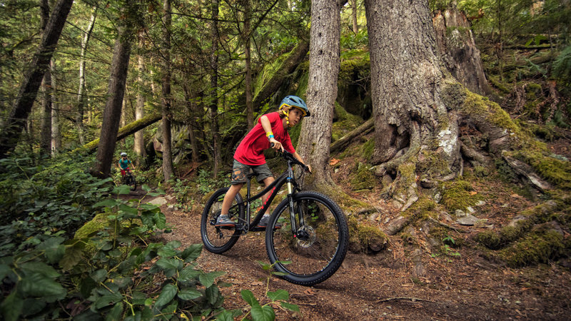 Petition Bill Desteph Mountain Bike Trails In First Landing State