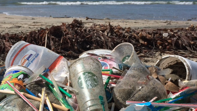 Billedresultat for Stop plastic pollution from McDonald's and Starbucks