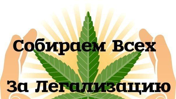 Я за легализация марихуаны картинки и рисунки конопли