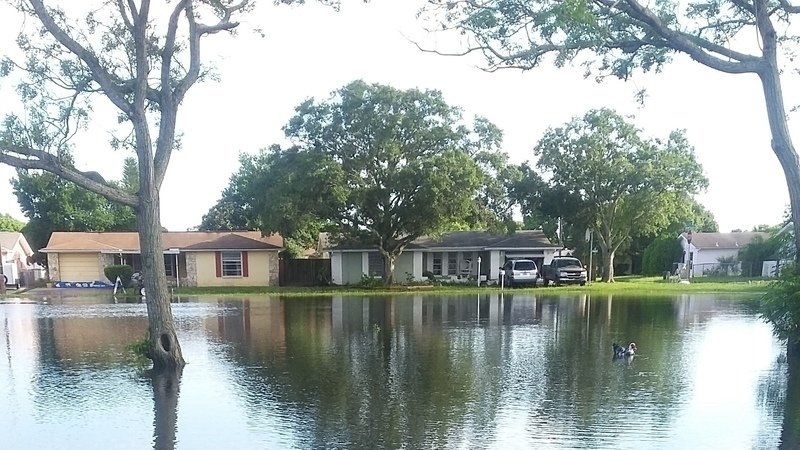 Sensational Petition Jack Mariano Flooding In All Of Pasco County We Home Remodeling Inspirations Propsscottssportslandcom