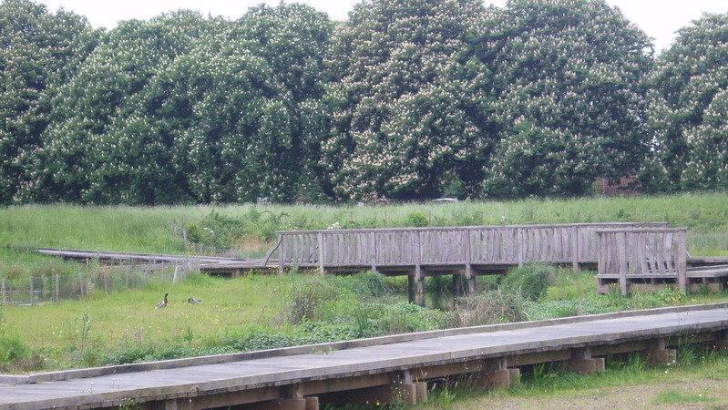 Sutcliffe Park Nature Reserve
