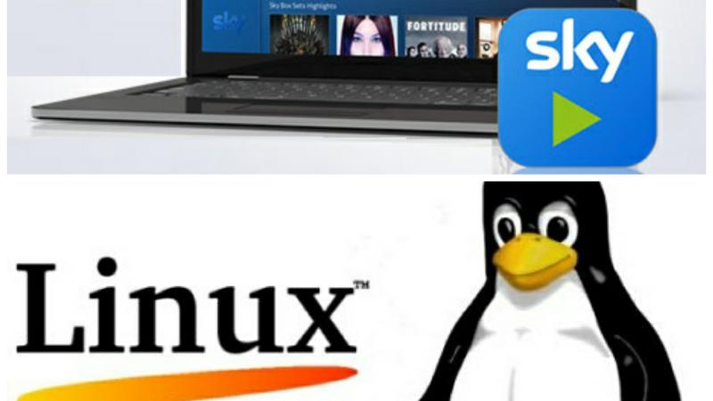 Sky Go Linux