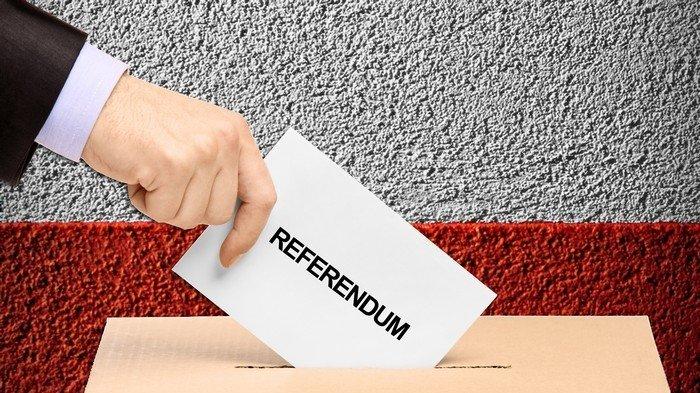 Plus de chèques en blanc aux élus: mettez en place le Référendum d'Initiative Citoyenne!