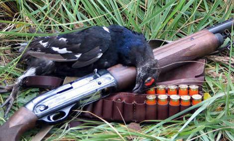 Новые Правила ведения охотничьего хозяйства и охоты вступили в силу