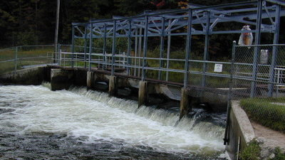 Petition · Rick Snyder: Save the Little Manistee River fish
