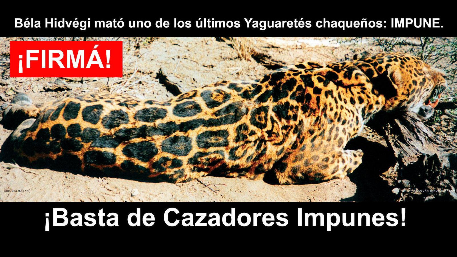 Petici n no m s cazadores impunes safariclubintl for No mas 900 oficina directa