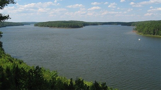 Petition nc general assembly clean up jordan lake now for Jordan lake nc fishing