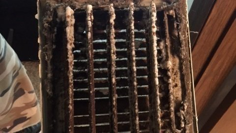 Mold In Bathroom Landlord Responsibility petition · nebraska state senate: mold regulations and a