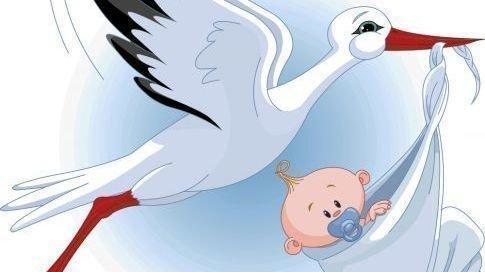 свойства картинка в ожидании малыша аист этом узнаете раньше