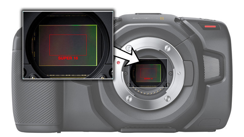 BMkfZJTaHEdpXTu-800x450-noPad.jpg