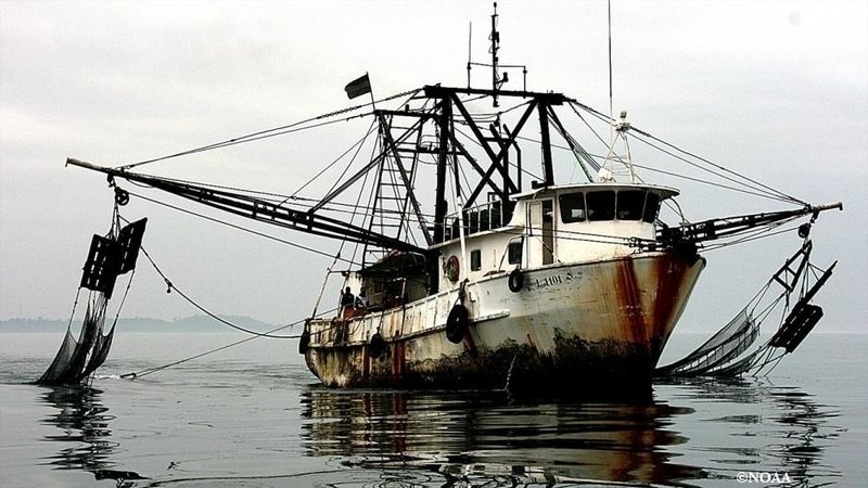 Petition · Presidential Task Force on Combating IUU Fishing