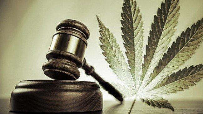 Административная ответственность за употребление марихуаны марихуана полезное действие