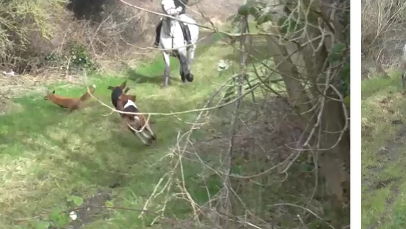 Atherstone United Kingdom  city photos : Petition · Prosecute the Atherstone Hunt · Change.org