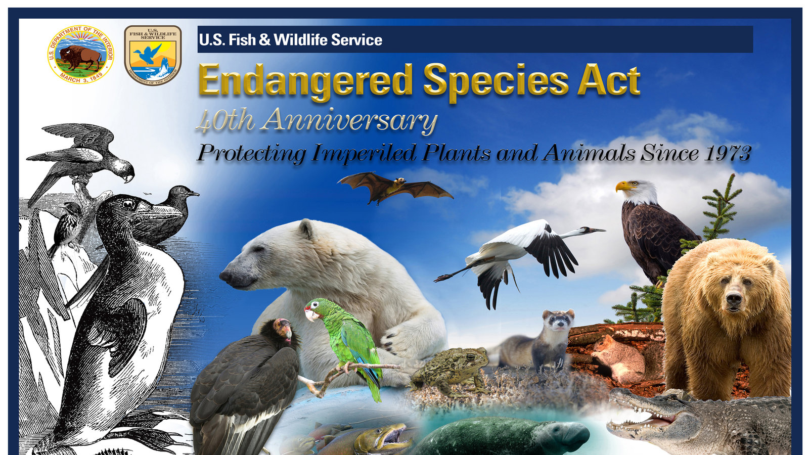 1973 endangered species act research topic The endangered species act, passed into law in 1973 it requires federal and state governments to protect all species threatened with extinction that fall within the borders of the united states and its outlying territories.