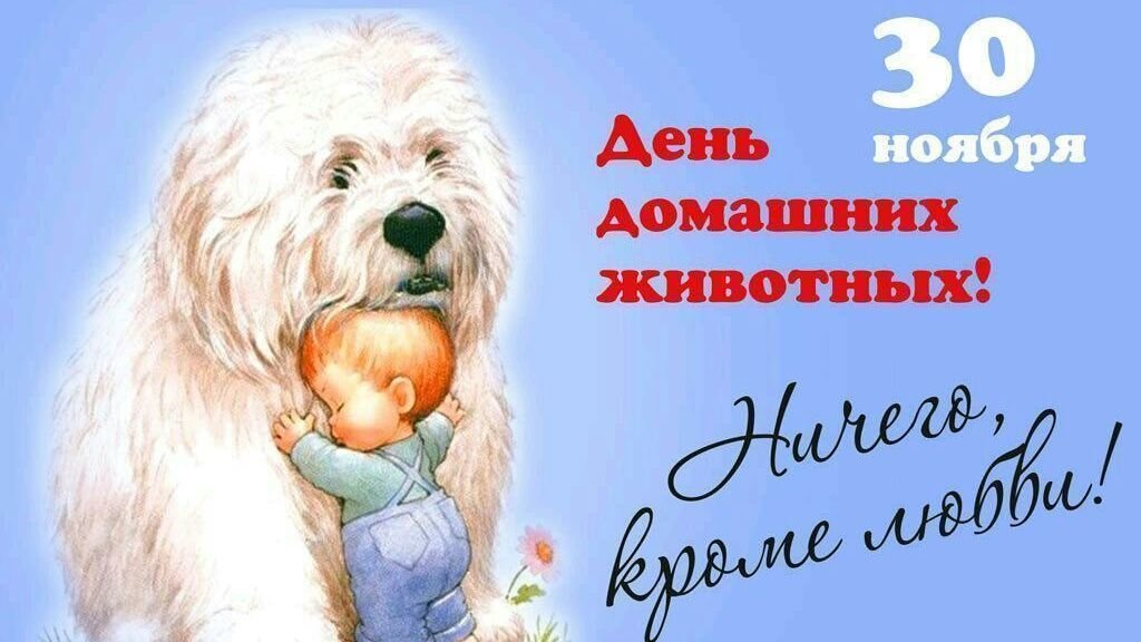 тренировках открытки день домашних животных 30 ноября изолированы друг