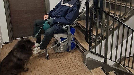 Ascenseurs en panne ! la pétition  des quartiers populaires qui prend de l'ampleur sur Change.org XjaegUdspLoKyQi-556x313-cropped