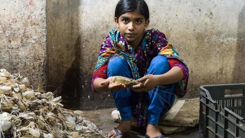 petition help stop canada s child labour problem change org