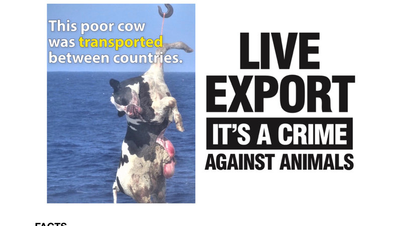 How Do We Make Sure We Will Continue To >> Petition · David Littleproud. It's time to END LIVE EXPORT! · Change.org