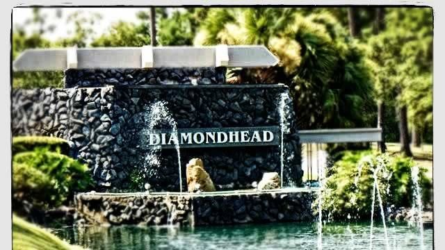 Petition The Board Of Directors Of The Diaimondhead CC And