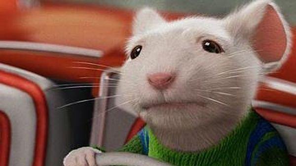 Petition To Ban The Stuart Little Movies For The Betterment Of The World Change Org