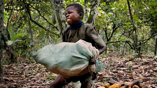 child labour in africa pdf