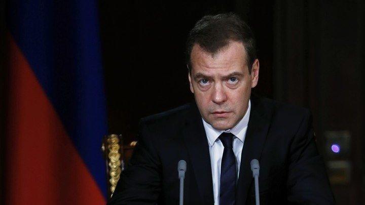 медведев дмитрий анатольевич занимаемая должность
