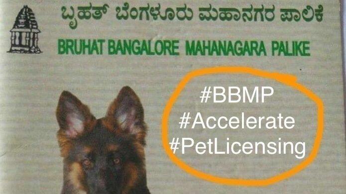 Accelerate Pet Licensing In Bangalore