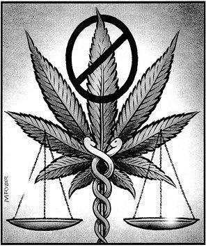 Умирал ли кто от марихуаны когда поспевают семена конопли