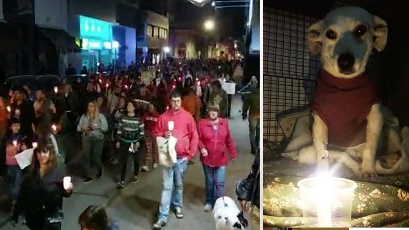 Petition update · MIL PERSONAS MARCHARON AYER EN RIO CUARTO · Change.org