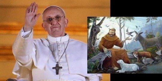 Petición · Papa Francisco: Dele protección a los animales · Change.org
