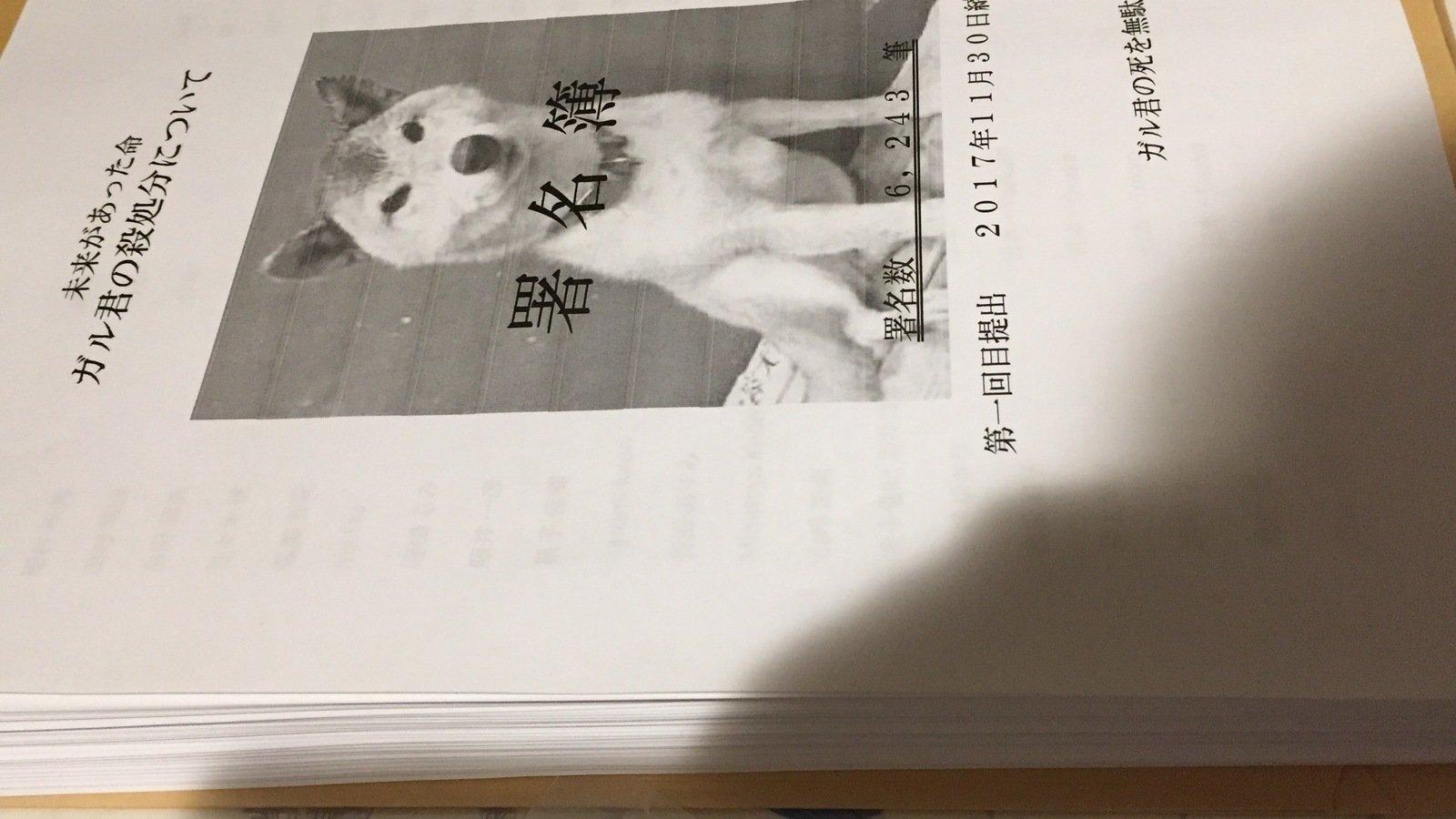 petition update お知らせ change org
