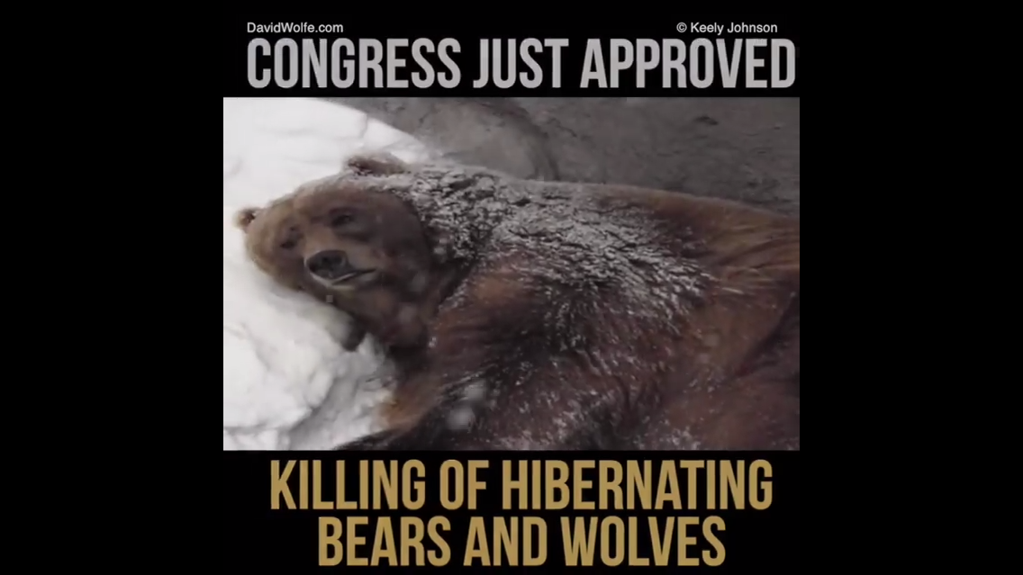 petition donald trump stop congress killing hibernating
